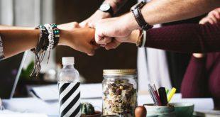 Mitarbeiterstruktur und die Art der Zusammenarbeit